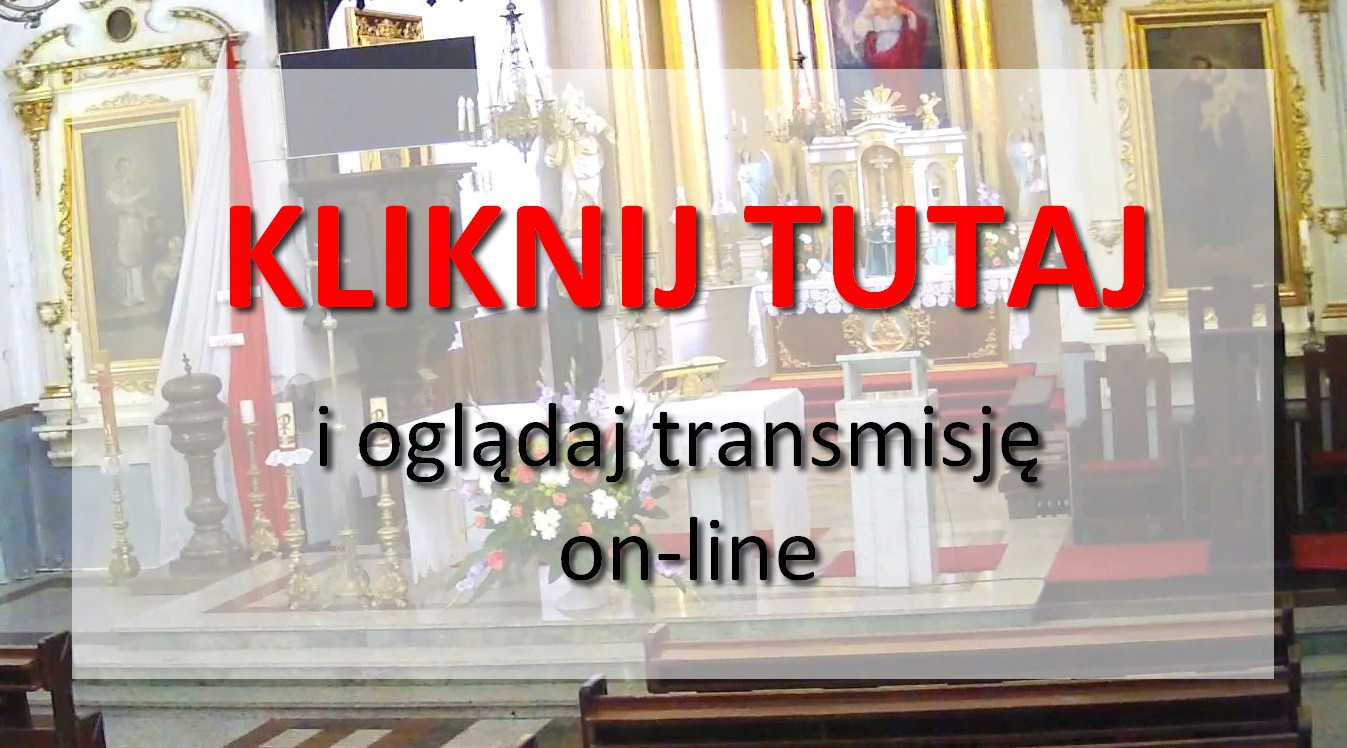 Ogl�daj transmijs� on-line!